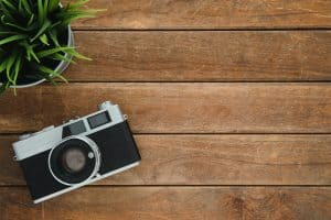 camera and plant on a table